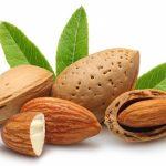 कडुवे बादाम की रामबाण दवा एवं अवगुण Merit & Demerits of Almond